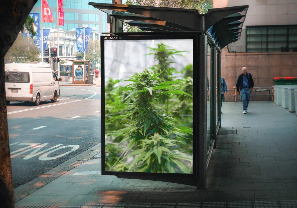 richardt thecbd bus stop ad cannabis