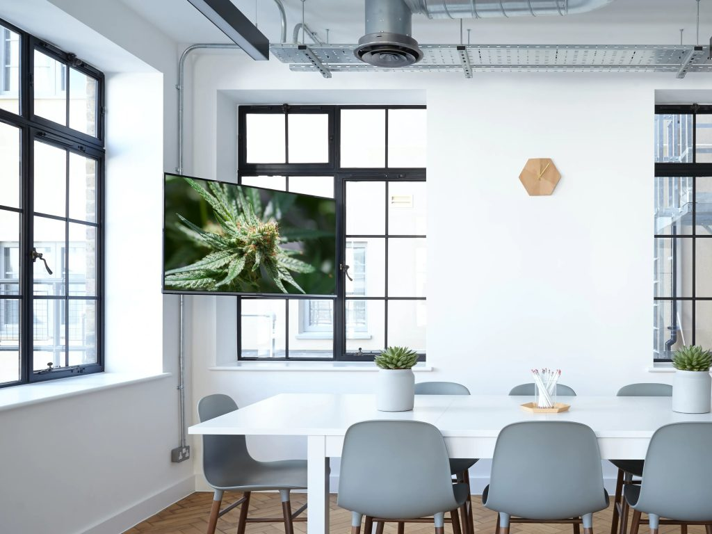 richardt thecbd cannabis meeting room