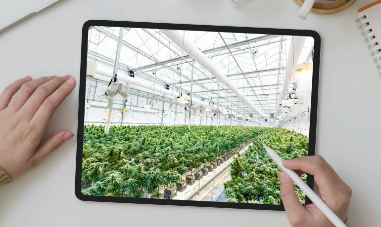 Free Cannabis and Technology Stock Images