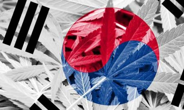 South Korea, First Country in Asia to Legalize Medical Marijuana