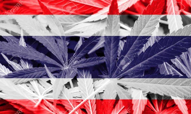 Merry Christmas! Thailand approves Medical Marijuana!