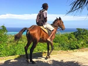 jamaican man riding horse