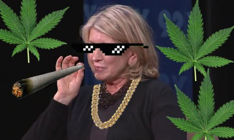 Canopy Growth Teams up with Martha Stewart for CBD Products