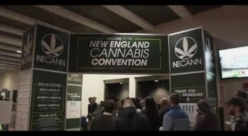 The 6th Annual New England Cannabis Convention