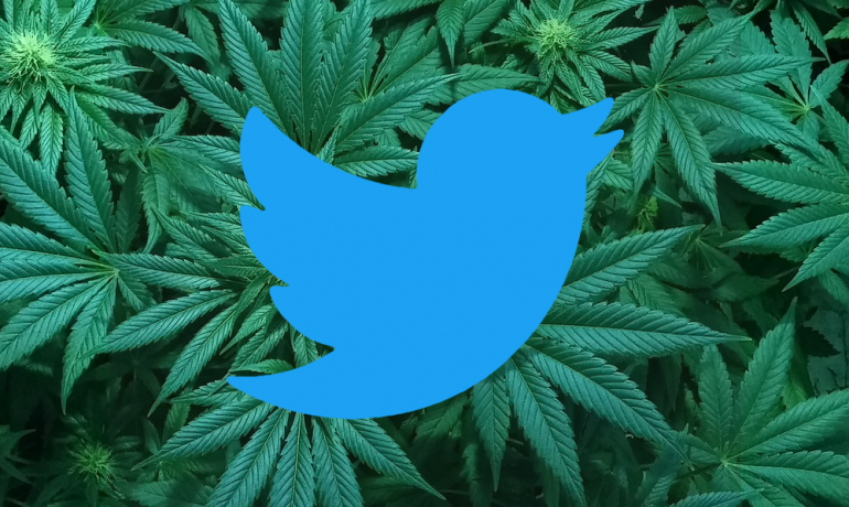 Searches on Twitter for 'Marijuana', now come with a Warning